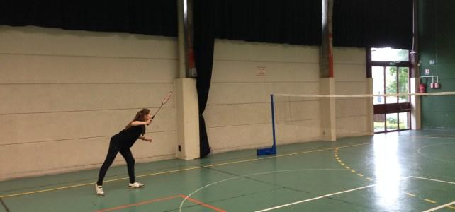 Résultats Badminton Individuel Interdistrict
