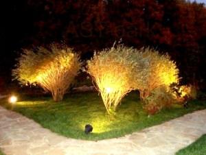 декоративная подсветка кустарников