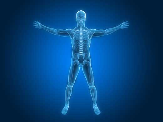 Stimulating Bone Growth – A Look at the Research