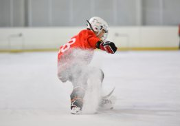 Школа индивидуального мастерства «inSkate-Hockey»