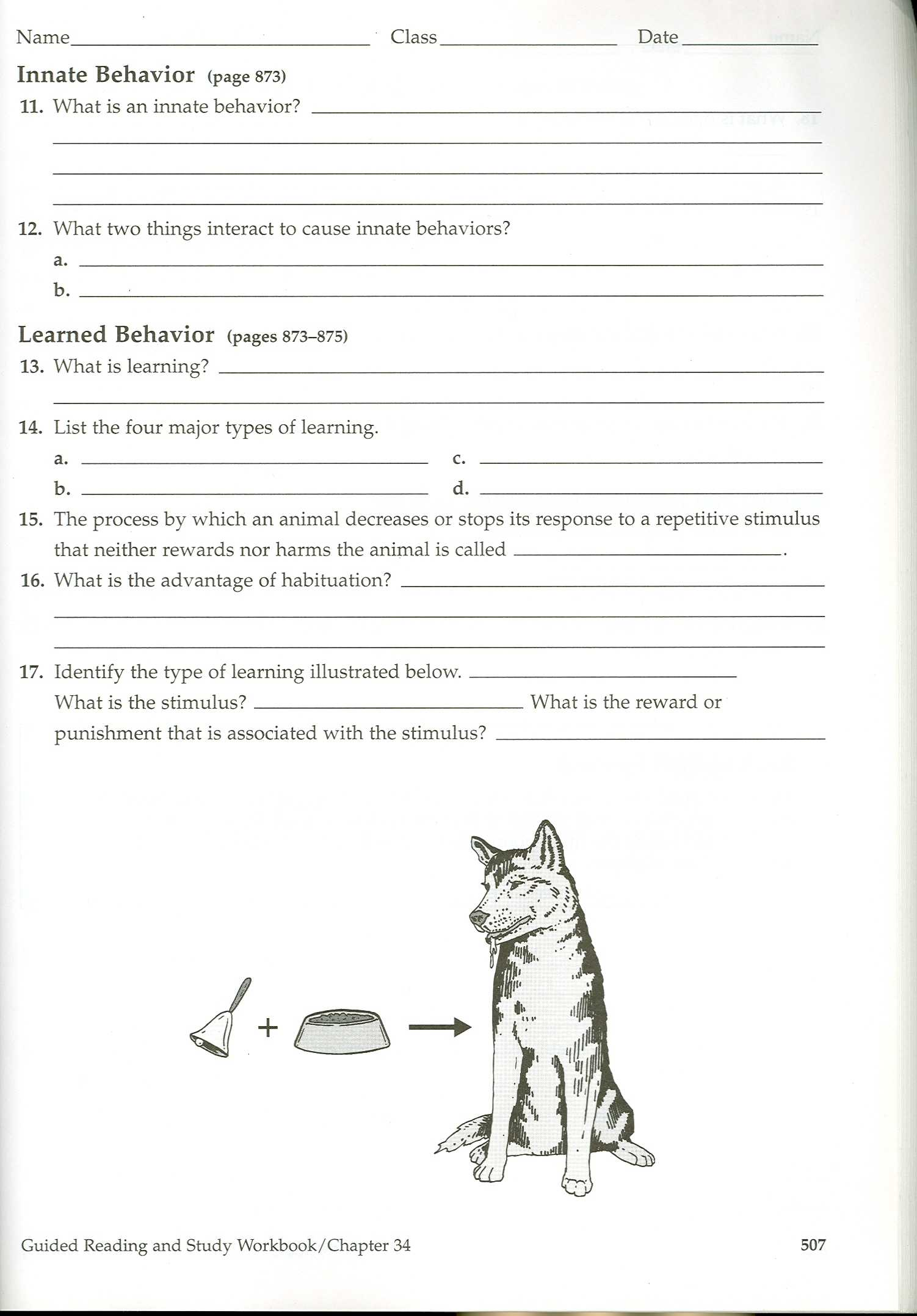 Learned Behavior Worksheet