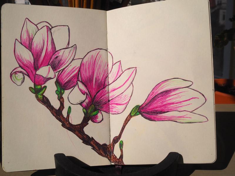 teckning-6