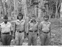 Suspected : SERGEANT MAJOR KATO CHUICHIRO (15 years) ; SERGEANT OHARA TOSHIO; SERGEANT YOKOTA HIDEO (9 years) ; AND SERGEANT TAKAZAWA SHIGEMITSU.