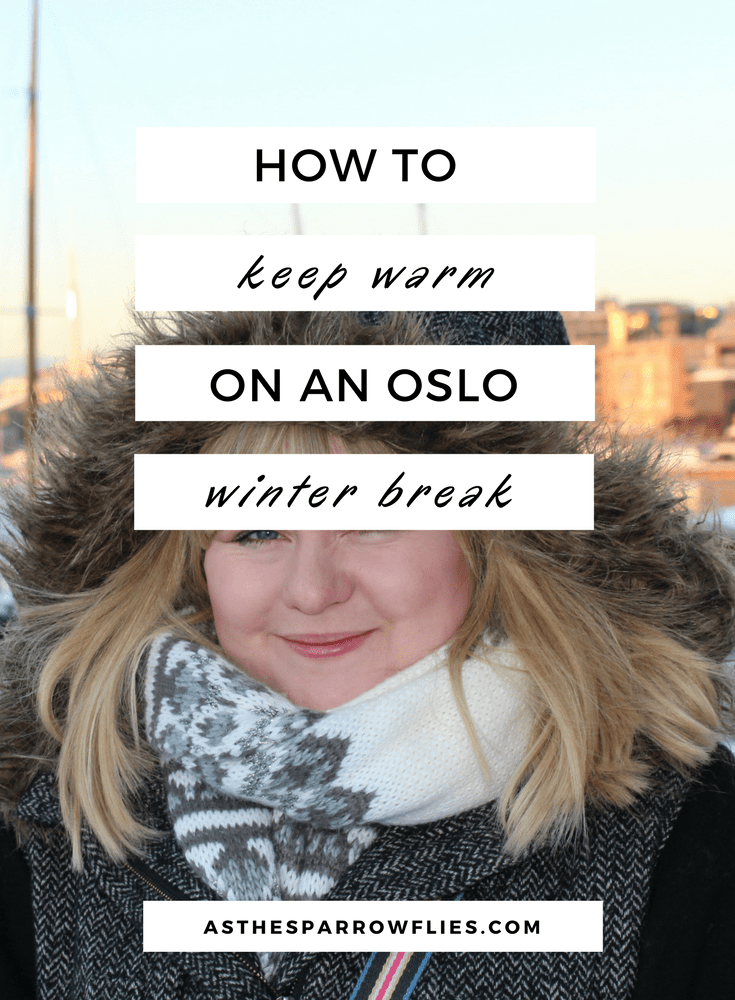 Oslo in January | Weekend in Oslo | Visit Norway | Oslo in the Snow | Winter Holidays #traveltips #oslo #norway