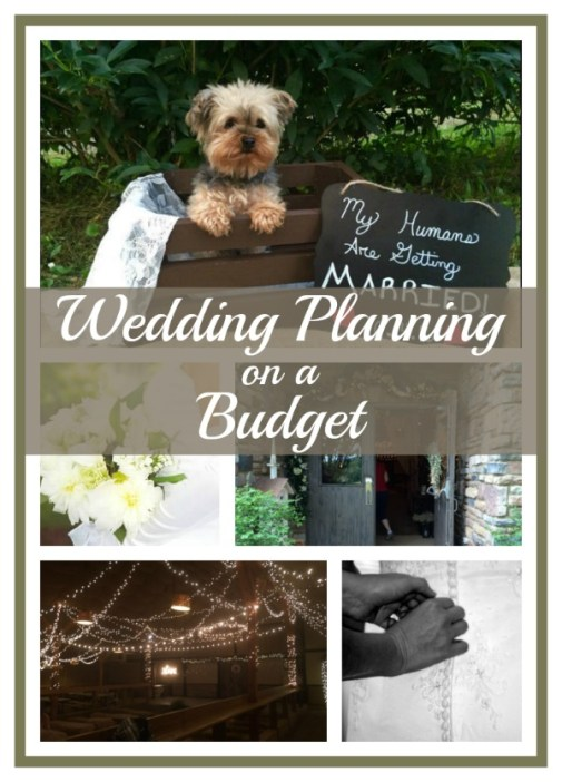 Wedding Planning On A Budget