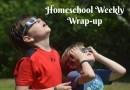 Solar Eclipse Fun – Homeschool Weekly Wrap-Up