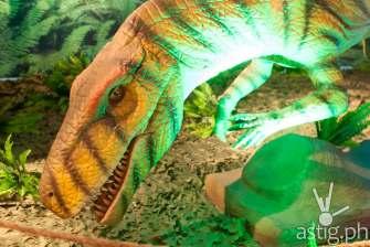 Herrerasaurus - Dinosaurs Around The World exhibit - Mind Museum BGC