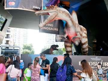 Spinosaurus and Tyrannosaurus Rex - Dinosaurs Around The World exhibit - Mind Museum BGC