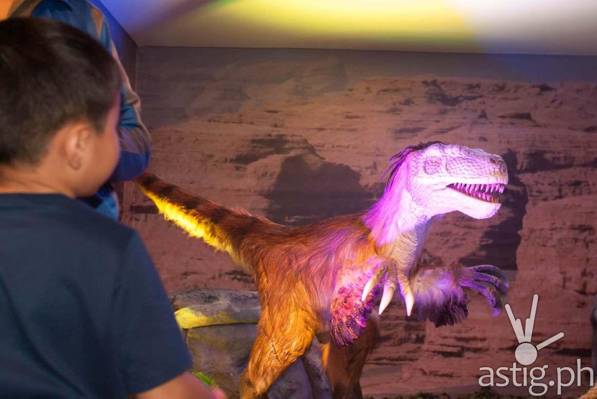 Velociraptor - Dinosaurs Around The World exhibit - Mind Museum BGC