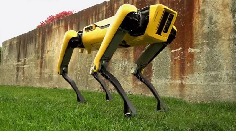 Boston Dynamics' Latest Robot Dog is Slightly Less Terrifying