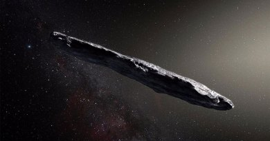 First Interstellar Object might be Artificial