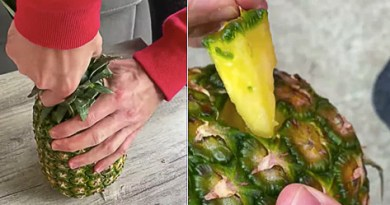How to Eat a Pineapple Without Using a Knife