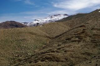 Ouarzazate7