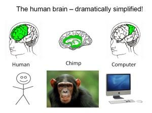 braincomputermonkeyhuman