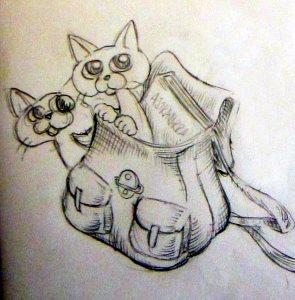 Kassi kissat