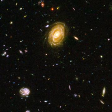 Emission lines trace star formation rate in distant galaxies