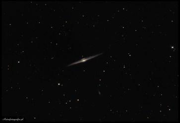 """Teleskop SkyWatcher Newton 8"""" (200/1000), zmodyfikowany 300D - 21x420s., montaż Takahashi EM200. NGC4565 to przepiękna galaktyka a jednocześnie """"łatwy kąsek"""" na wiosennym niebie. Można ją spokojnie fotografować ogniskową od 500mm pokazując już ładną ciemną wewnętrzną strukturę a przy okazji kilkanaście mniejszych galaktyk w jej otoczeniu. Ogniskowa 1m i więcej pokaże wyraźniej ciemny pas w środkowej części galaktyki. Niestety warunki pogodowe wciąż są bardzo słabe. Kiedy robiłem poprzednie zdjęcie (M51) myślałem, że gorzej być nie może, a jednak - przy tym zdjęciu ze względu na zmienną zimowo-wiosenną aurę i nadchodzący cieplejszy front seeing był wyjątkowo słaby (momentami w okolicy 4~5""""). Powoduje to gorszy tracking i niestety znaczny spadek ostrości zdjęcia. Niestety nocek obserwacyjnych jest tak mało, że każdą należy wykorzystać"""