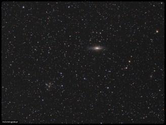 Teleskop Celestron 80ED + TV 0,8x (480mm), SBIG ST2000XM - 18x600s L + 6x600 RGB, montaż Takahashi EM200. Najbardziej okazała grupa na tym zdjęciu składa się z NGC7331 oraz jej sąsiadek powyżej NGC 7337 NGC 7340, NGC 7335, NGC 7336, PGC 2051985 i poniżej NGC 7325, NGC 7326 (kwintet Stefana). Druga grupa to z angielskiego Deer Lick Group składający się z NGC 7319, NGC 7318, NGC 7318A, NGC 7317. Do tego kilka mniejszych i większych galaktyk (prawo bok NGC7315, taka fajna maciupka z beleczką górą lewo od środka NGC7343 i kilkanaście innych. Zdjęcie naświetlałem dwie nocki, w trakcie pierwszej 25.09.2008 wykonałem luminancję 18x10', 28.09.2008 dorobiony został kolor przy dość przeciętnym niebie z wysoką chmurą 6x10' każdego kanału z binem x2.