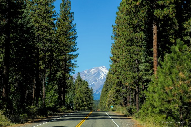 Hello Mt. Shasta