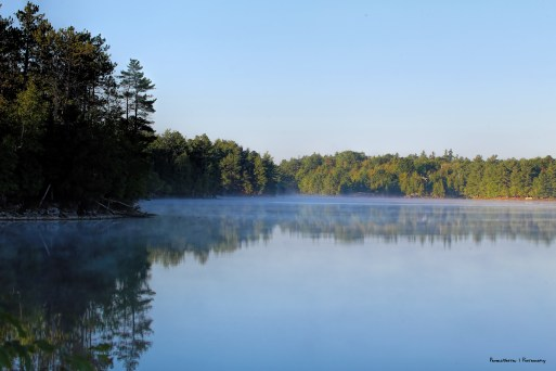 Early morning late summer mists as the cooler air hits the warm lake water