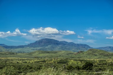 The Davis Mountains, so very very green