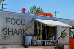#1 Restaurant in Marfa, the Food Shark