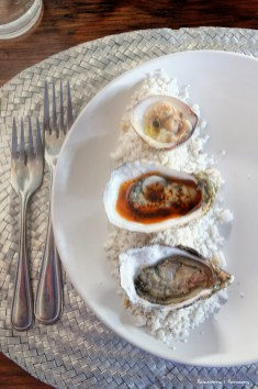 Oysters at the Manzanilla-Perfection