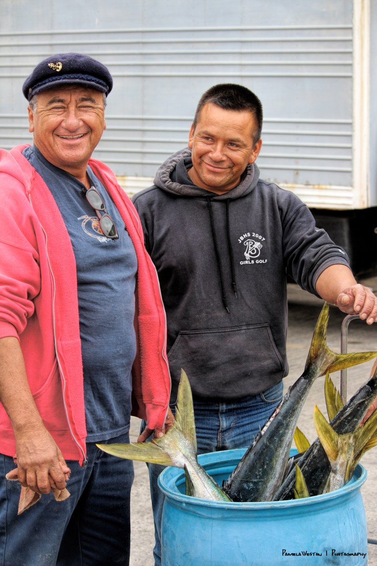 Delivery of yellowtail