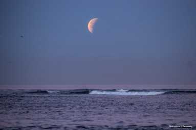 The moon setting while partially eclipsed