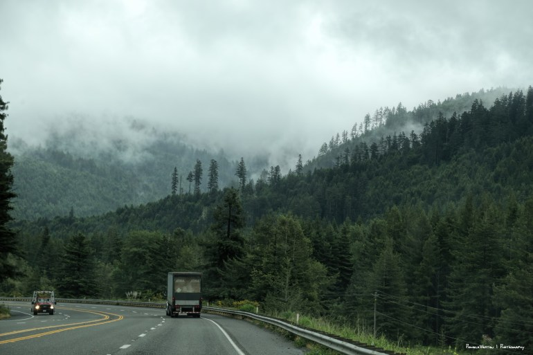 Love the low clouds and the trees along the US 101