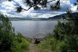 Path to Nicola Lake