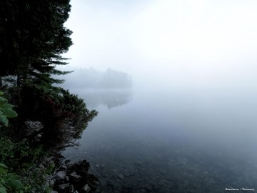 Mists on the lake
