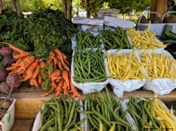 Millers Farm stand