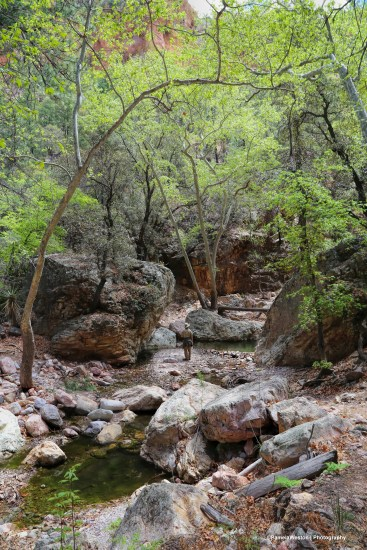 The Cave Creek trail