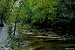 Cedar Creek runs towards the Arch