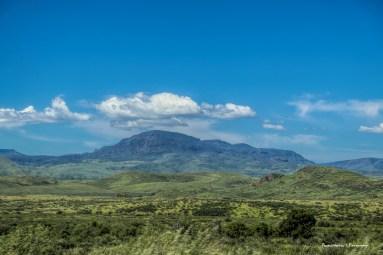 The Davis Mountains, so very very green