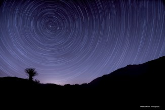Star Trails-long exposures of the North Star Polaris
