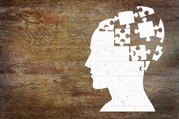 5 Scientific Facts About the Introvert Brain
