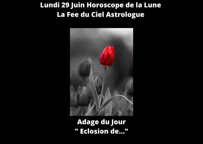Horoscope de la Lune du 29 Juin 2020