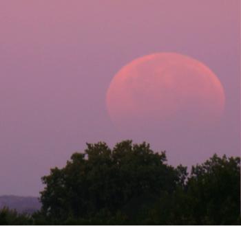 Partial Lunar Eclipse 2014