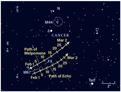 Paths of asteroids Melpomene and Echo, February 2021