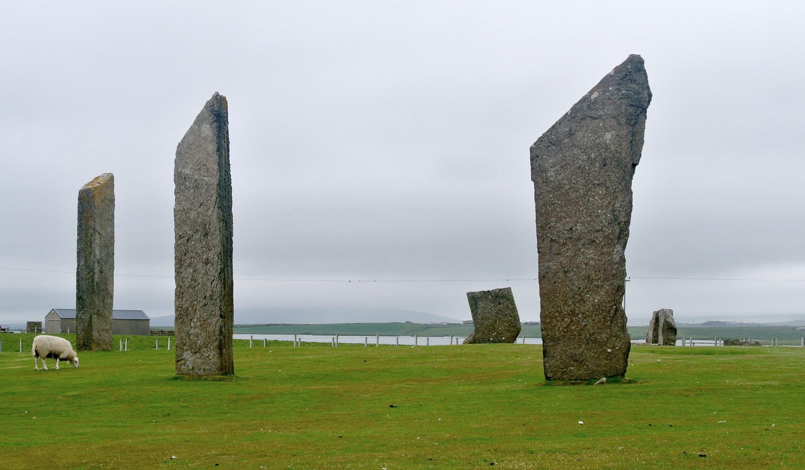 The circle of the Stones of Stenness is 32.2 x 30.6 metres (106 x 100 feet). Its earthen henge is 45 metres (148 feet) in diameter, over 7 metres (23 feet) wide and over 2 metres (6.5 feet) deep and the circumference is 141.37 metres (464 feet). Image credit: Wikimedia Commons.