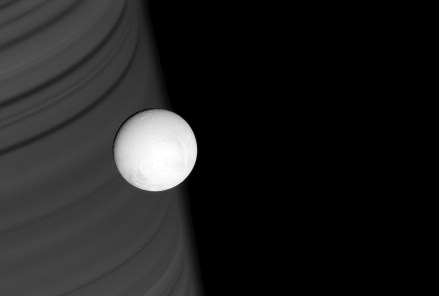 Enceladus and Saturn's Rings