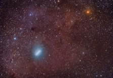 Comet in the Savana