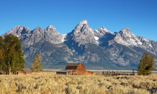 426_803_Mormon_Row_Grand_Teton_National_Park_md