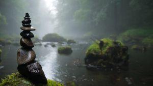 Stilstaand water heeft een gelijkaardig parcours als stilstaande emoties