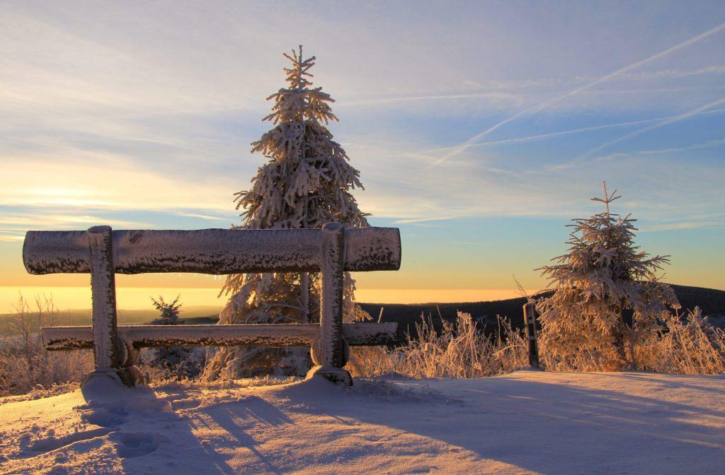 Met de vele luchtwegklachten is de winter de ideale periode om jouw slijmvliezen natuurlijk te ondersteunen.