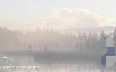 Suomi 2020