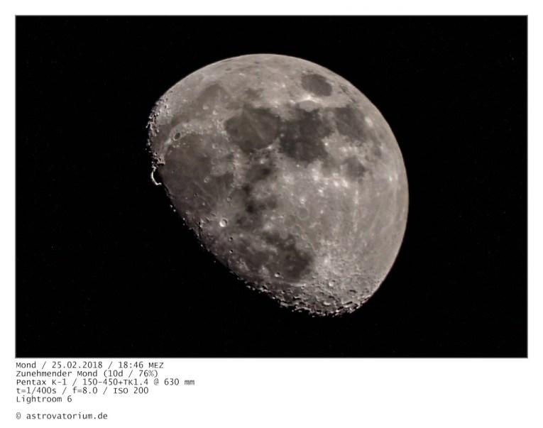 Zunehmender Mond / Goldener Henkel