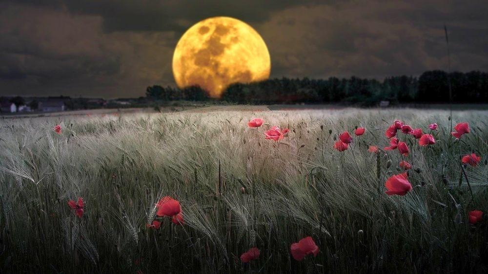 Лунное затмение 05 июля 2020